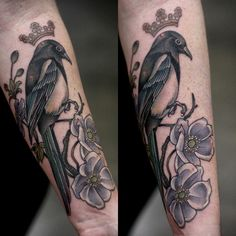 Crowned magpie and anemones. Thank you, Rachelle!