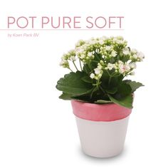 Flower pots with a soft look