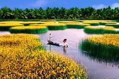 An impressive photo about Mekong Delta of By Nguyen Thanh Dung Mekong Delta Vietnam, Vietnam Map, Dalat Vietnam, Visit Vietnam, Vietnam Tours, Vietnam Travel, Vietnam Vacation, Vietnam Holidays, Travel Photos