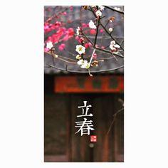 #立春 #梅花  by avgvstan
