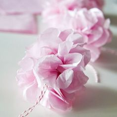 Create these pretty pink tissue pom poms and make them into a garland for your cherry blossom-inspired party!