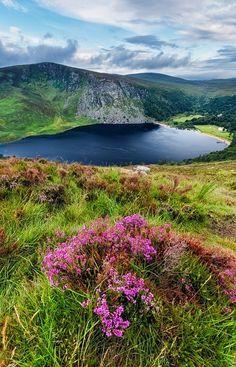 Landscape, Lough Tay - Wicklow