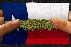 """The proposal would make Texas the fifth state in the United States to fully legalize recreational marijuana use. In a surprising, and """"unprecedented"""" bipartisan move, the proposal was approved in a House panel vote. Even more surprising to many was the fact that the author of the bill cited his Christian values as being the catalyst for the bill and his support for full legalization. Republican..."""