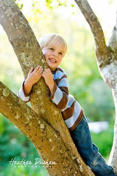 little boys must climb some trees. photo of boy climbing tree. kids portraits. outdoor family portraits.