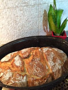 Dutch Oven Bread, Iron Pan, Pork, Cooking Recipes, Beef, Kale Stir Fry, Meat, Chef Recipes