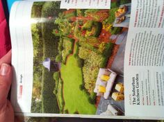 Parterre kitchen garden from April 2013 Southern Living 12x35 garden with Nellie Stevens holly hedge and boxwood borders