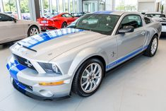 For Sale: 2009 Ford Mustang Shelby GT500KR (# 339, supercharged 5.4L V8, 6-speed, 240 miles) Shelby Logo, Ford Mustang Shelby, Ford Mustangs, 2009 Ford Mustang, Goodyear Eagle, Hid Headlights, Cool Sports Cars, Limited Slip Differential, Car Covers