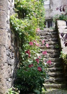 11 meilleures images du tableau escalier en pierre staircases stairs et beautiful places