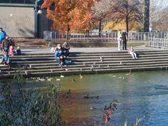 Parque París a pocos metros de la Urbanización Verdesol en Las Rozas