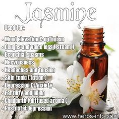 I love jasmine. It's one of my favorite smells