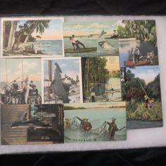 Vintage Florida Fishing Shark Seine Postcard Lot Of 9