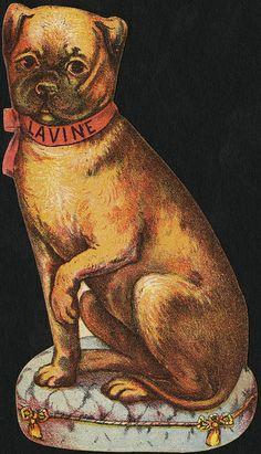 Lavine [front] | Flickr - Photo Sharing!