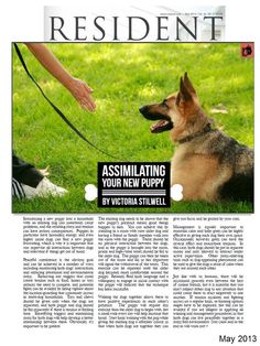 Victoria Stillwell's article on assimilating new puppy into your household.