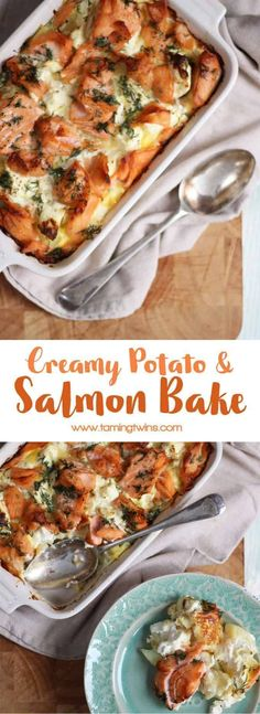 A delicious, warming, comfort food creamy salmon bake. Carb fuelled cosiness in . A delicious, warming, comfort food creamy salmon bake. Baked Salmon Recipes, Seafood Recipes, Vegetarian Recipes, Cooking Recipes, Healthy Recipes, Fast Recipes, Vegetarian Cooking, Vegetarian Times, Cooking Kale
