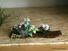minttumeiramin miniatyyrit: Kuinka aloittaa nukkekodin puutarhan teko - How to start a dollhouse garden