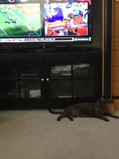 Misti greene loves football.
