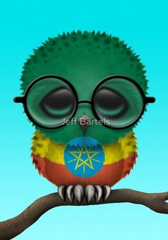 Nerdy Ethiopian Baby Owl on a Branch by Jeff Bartels