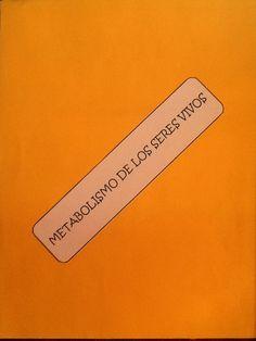 Bloque 4 DGB Biología 1: Metabolismo. DGB Metabolism