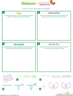 Worksheets: Draw the Life Cycle of a Butterfly....    If you want a good site for summer bridge worksheets, go to education.com.  All the worksheets are free printables and it is for Pre-k - 12.