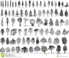 Trees Illustartion Stock Photo - Image: 8079190