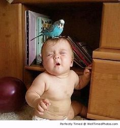 cute baby expressions, Funny Images, Photos Online, Funny Jokes, is a funny way in life! So Cute Baby, Cool Baby, Baby Kind, Baby Love, Cute Kids, Cute Babies, Precious Children, Beautiful Children, Beautiful Babies