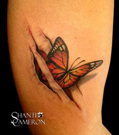 Butterfly Emerging from Skin Rips