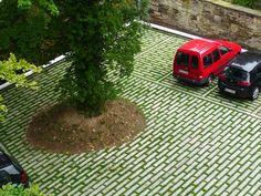 Villa Gerloff | Garden of Cultural Heritage Foundation Braunschweigest | 2013