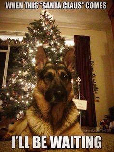 Haha! Santa guard.