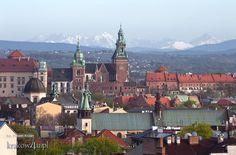 Wawel, katedra krakowska (Polska), a w tle góry Tatry.