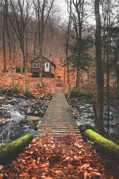 Sharing my obsessive love of rustic cabin life through photos and art I have collected. Please feel free to share - most of the photos. Cabin Homes, Log Homes, Ideas De Cabina, Cabin In The Woods, Cabins In The Mountains, Mountain Cabins, Cottage In The Woods, Little Cabin, Cabins And Cottages