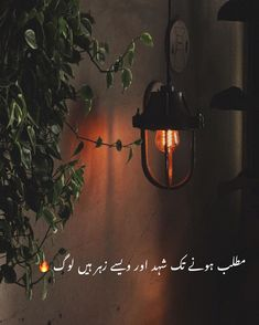 Love Poetry in Urdu when you want to express your love to someone or share your emotions by words, but it is hard to say your feelings. At this time, the love poetry will help you and do a work for you by using a few love lines. One Line Quotes, Poetry Quotes In Urdu, Best Urdu Poetry Images, Love Poetry Urdu, Urdu Poetry 2 Lines, Urdu Funny Poetry, Funny Quotes In Urdu, Qoutes, Life Quotes