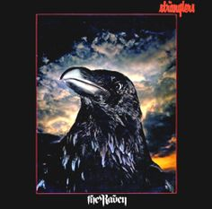 The Raven (The Stranglers album) - Wikipedia