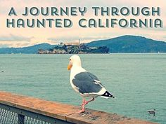 Join us as we take a Journey through five of the most #HauntedPlaces in #California