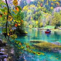 Lake Blausee - Switzerland ✨✨ Picture by ✨✨ Good morning world Berne Switzerland, Blausee Switzerland, Grindelwald Switzerland, Switzerland Destinations, Switzerland Vacation, Switzerland Hiking, Best All Inclusive Honeymoon, Best Honeymoon Destinations, Vacation Places