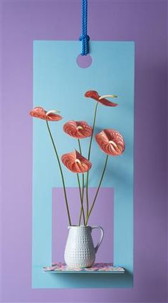Pastels are very popular! Use these colour tones in your home ©Anthura #anthurium #cutflower #SanteRoyal #orange