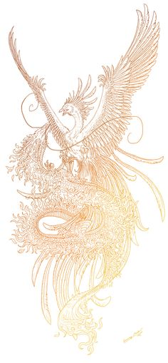 Phoenix and dragon lineart by Sunima.deviantart.com on @deviantART