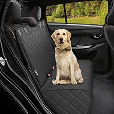 Amazon.com: DakPets Dog Car Seat Covers - Pet Car Seat Cover Protector – Waterproof, Scratch Proof, Heavy Duty and Nonslip Pet Bench Seat Cover - Middle Seat Belt Capable for Cars, Trucks and SUVs: Automotive Dog Cover For Car, Best Car Seat Covers, Dog Hammock For Car, Dog Suit, Car Seat Protector, Dog Car Seats, Pet Safe, Back Seat, Dog Cat