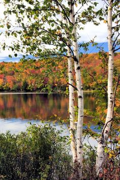 Varnum Pond, Temple, Maine. Credit: Shanna Martin via Flickr