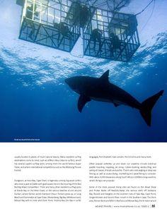 My great white shark image is featured on Mzanzi Travel Magazine https://www.yumpu.com/en/document/view/59000714/mzanzi-addition-6-digital-text2
