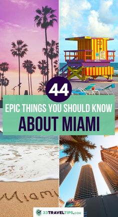 44 Things You Should Know About Miami. Pristine beaches, top-notch nightlife, gorgeous sub-tropical climate that feels like paradise. All these are well-known facts about Miami – the Sunshine City. But there's more than that. Click to know more! | Miami Facts | Interesting Facts About Miami | Fun Facts About Miami | Things to Know About Miami | Miami Travel | #miami #facts #usa #travel Usa Travel Guide, Travel Usa, Travel Guides, Travel Tips, Road Trip Florida, Florida Travel, Amazing Destinations, Travel Destinations, Cool Places To Visit