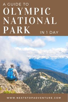 Are you planning a trip to Olympic National Park in Washington State? Read more for tips on what to see and do.