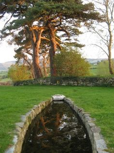 Finnian's Coffin Trough Well in Ballinvalley, Carlow County, Ireland. Photo by Celeste Ray - In Ireland holy wells are the focus of spiritual devotion from prehistoric times. They are sites of daily individual prayer & annual celebrations. The Places Youll Go, Places To See, Emerald Isle, Ireland Travel, British Isles, Dream Vacations, Great Britain, Holi, Places To Travel