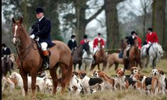 Karl Mathiesen: It's 10 years since fox hunting was banned in the UK but the battle lines are still drawn, with hunters saying the law has failed and should be repealed while animal welfare groups hail its success