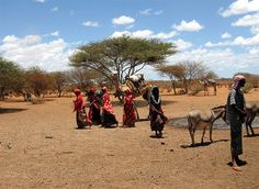 somalia | Somalia - Travel Guide and Travel Info