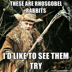 Radagast the Brown - These are rhosgobel rabbits I'd like to see them try!