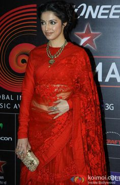 Divya Khosla in a beautiful Sabyasachi sari at the GIMA 2014. A pity her pose is not flattering enough.