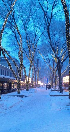"luinteski: ""A street in Boston. "" ❄️ Christmas Winter Dreamin ❄️"