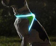 No pierdas mas a tu perro cuando sales a pasear de noche con este original collar tu perro sera visible desde lejos. Fabricado en nailon y con varios leds de iluminación.