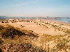 Comunidades cantábricas se unen para salvar sus frágiles sistemas dunares | SoyRural.es