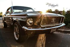Ford Mustang Fastback 68 by Aenia Art